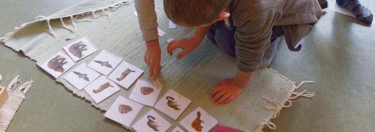 langage Montessori stage formation Montessori enseignants du public